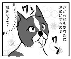 犬の本音3.jpg